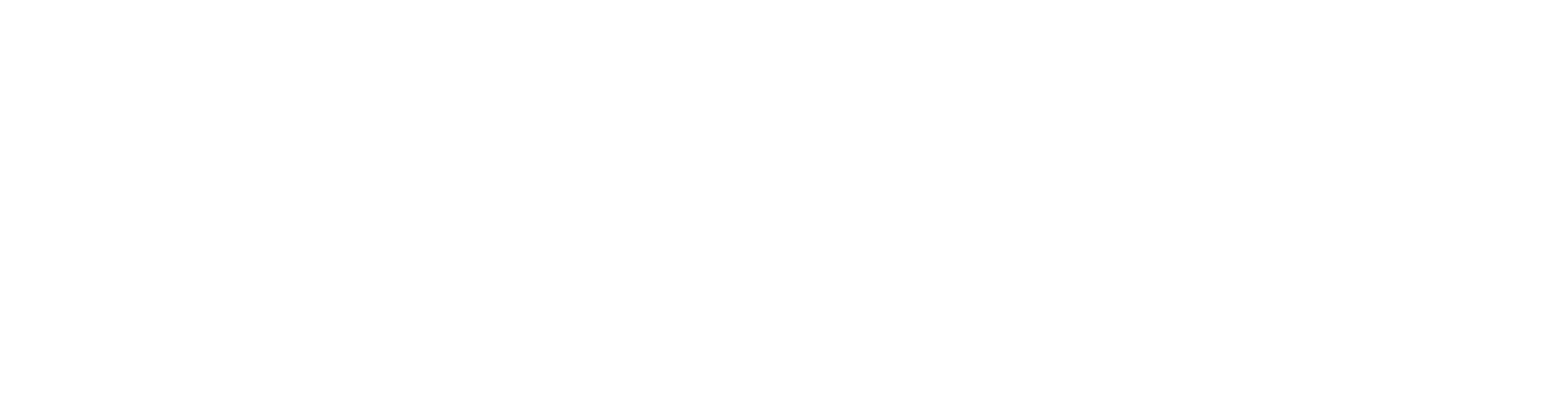 Cyberint white logo